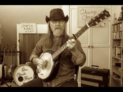 Charlie Hayes  banjitar Goldtone 6 string banjo
