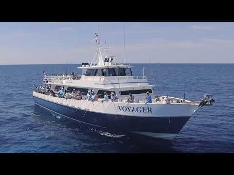 Deep-Dropping For Tilefish, Wreckfish, Hake And More | S14 E7