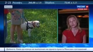 Обвиняемая в краже собаки Дианы взята под домашний арест