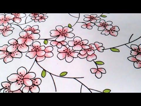 Menggambar Bunga Sakura Dengan Cara Sederhana Buat Pemula