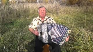 Шумел камыш - гармонь - А.Трифонов
