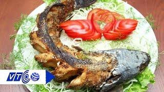 Thơm lừng cá quả nướng riềng sả, hết mùi tanh | VTC