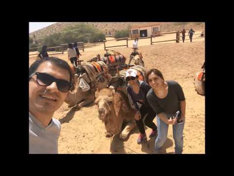 One Day Road Trip In Israel  (Dead Sea, Masada)