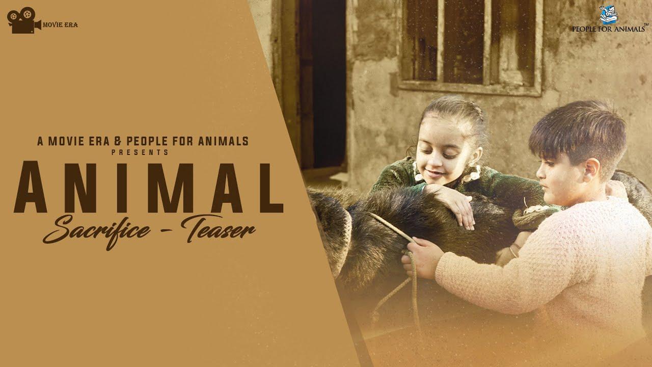 Download Animal Sacrifice Short Film | Bali | Teaser | Sudesh Winkle| Amann Bal | Ashleen Kaur | Movie Era
