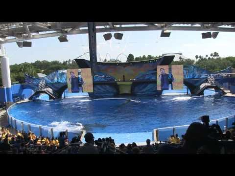 SeaWorld's One Song performed live by Spencer Lee during One Ocean premier