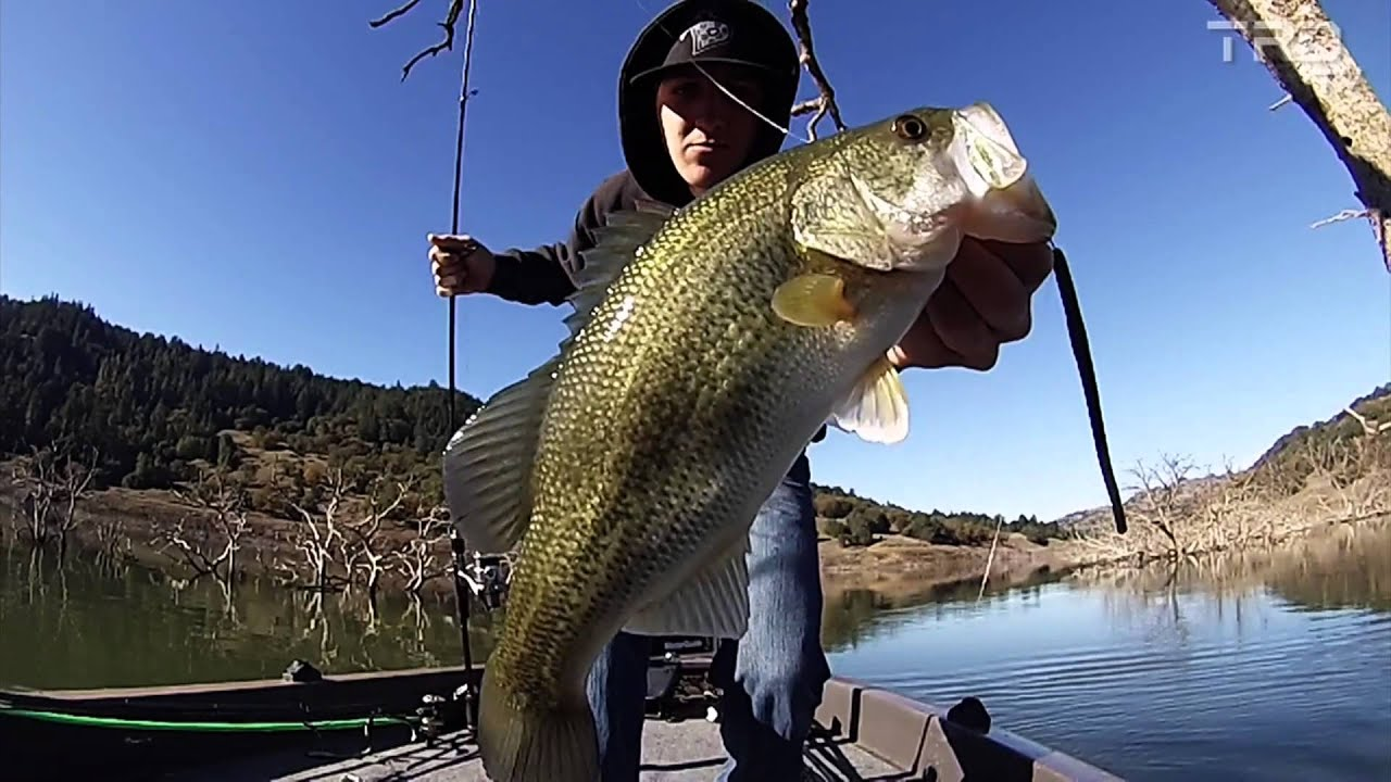 trdtv lake sonoma fall bass fishing youtube