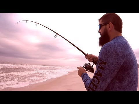 Surf Fishing During Red Tide