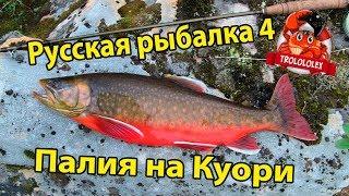 Російська рибалка 4 Палія на Куори. Де ловити?