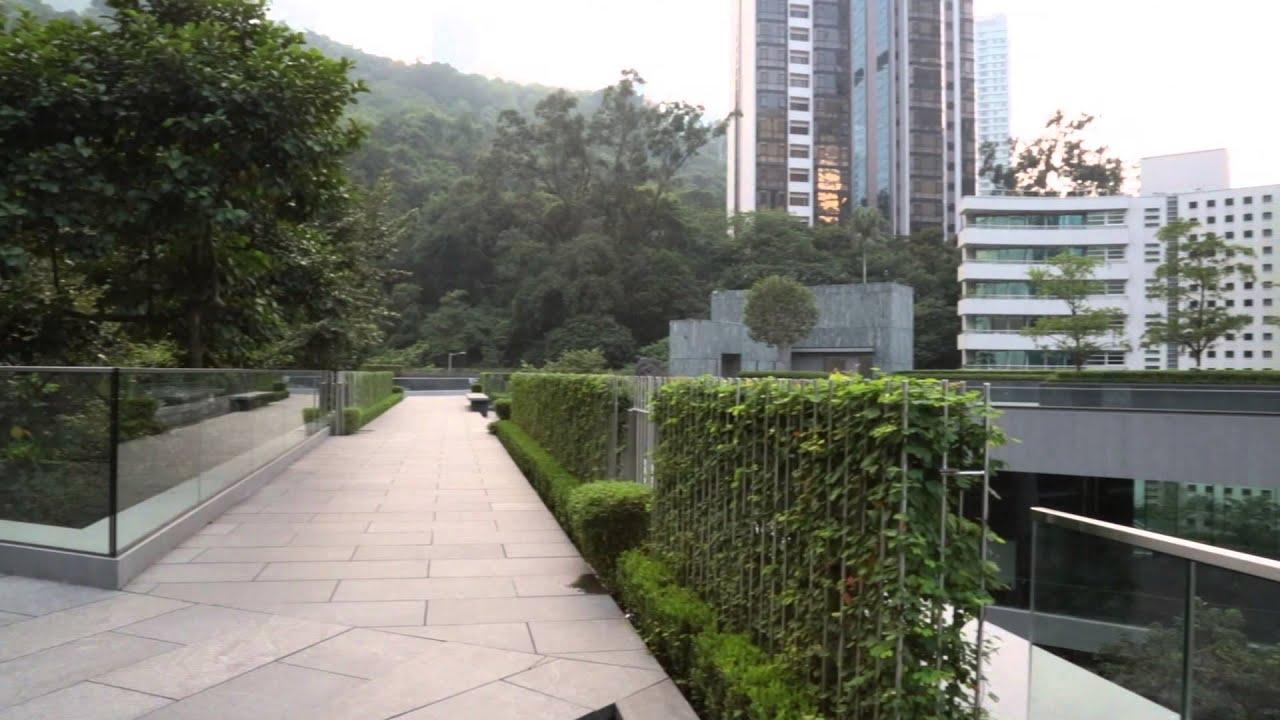 hong hong kong society - 1280×720