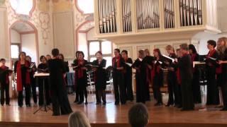 """Ensemble La Gioia: """"Hab oft im Kreise der Lieben"""" (Friedrich Silcher) - Burghausen 2011"""