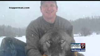 Images of Idaho trapper posing with Idaho wolf in Idaho trap cause regional uproar
