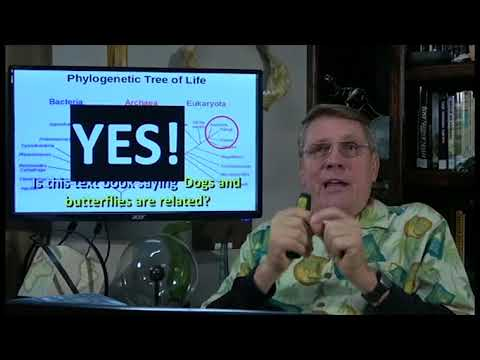 Comment Responses 1-3-2018, DNA similarities is NOT evidence for evolution!