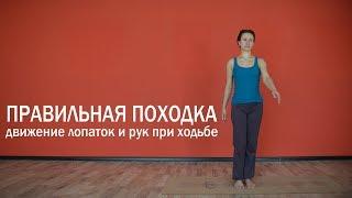 Правильная походка | Движение лопаток и рук при ходьбе | Красивая осанка