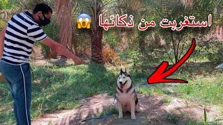 كيف دربت الكلبه الساحره ب 15 دقيقه بس ؟ 😱