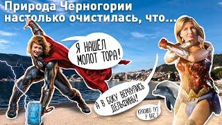 Природа в Черногории настолько очистилась, что приплыл дельфин и молот Тора.