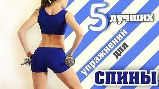 5 Лучших упражнений для СПИНЫ | Back Workout(Развернуть меня↓------------------------------ Здравствуйте друзья! На этой тренировке я покажу..., 2014-04-04T11:52:35.000Z)