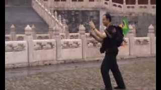 Tai Chi Pai Lin na China