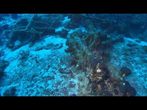 Sualti Kultur Mirasi - Underwater Cultural Heritage