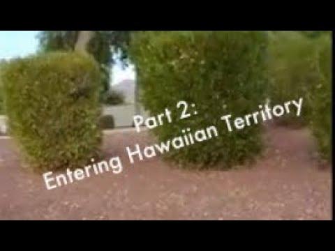 Survivaler At Will! Part 2: Entering Hawaiian Territory.