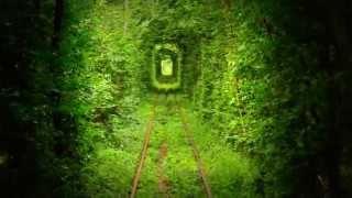 映画《クレヴァニ、愛のトンネル》の撮影時に記録した秘蔵映像です! こ...