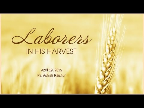 Laborers In His Harvest
