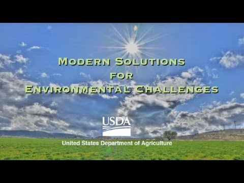 environmental problems and their solutions