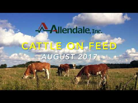 Cattle on Feed August 2017
