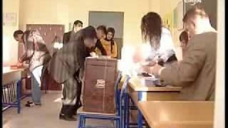Yurtdışında oy ve Mavi Kart