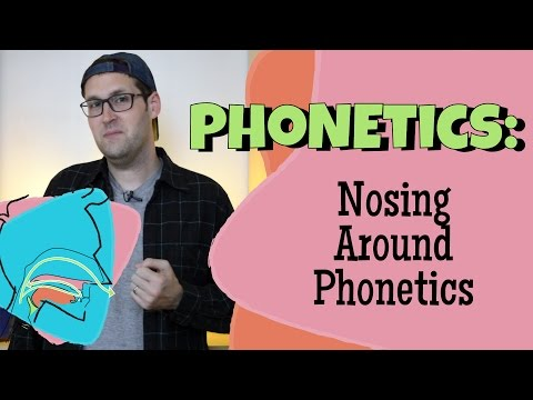 What Do Nasal Sounds Look Like? Sonorant Acoustics