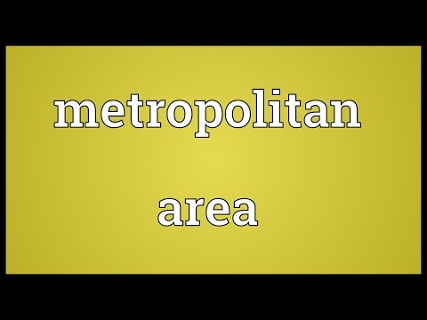 Metropolitan area Meaning