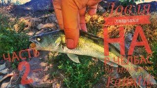 Ловля окуня на реке Челбас часть 2-ая.Первый судак на джиг.