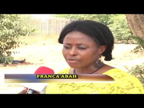 Immigration Recruitment: Nigerians Decry Recruitment Drive As Sham