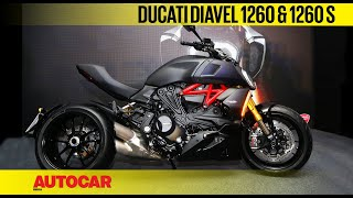 Ducati Diavel 1260 And 1260 S Walkaround First Look Autocar India