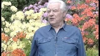 rhodo.ru - Подмосковные рододендроны