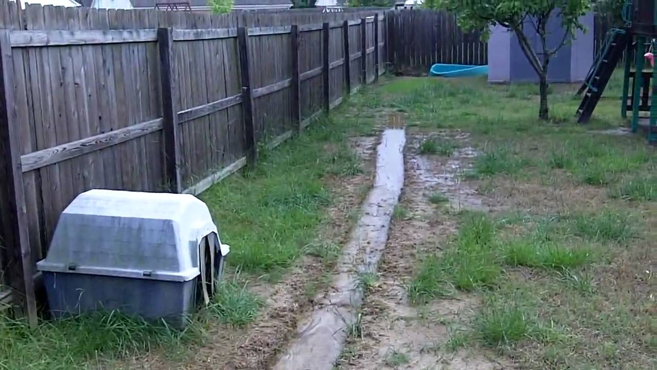 Beau Backyard Drainage Problem