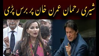 PPP leader Sherry Rehman blast on Imran Khan and PTI Government |Dekhty Raho TV|-HD