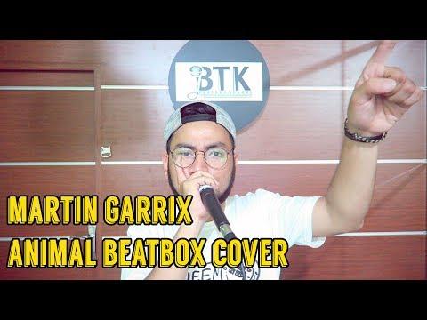 MARTIN GARRIX - ANIMAL BEATBOX COVER | EWOK BEATBOX