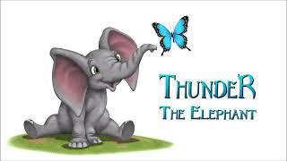 Thunder the elephant