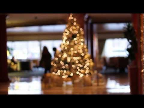 Holiday Corporate Decorations: Are All Corporate Plant Companies the Same?