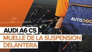 Cómo reemplazar Muelle de chasis AUDI A6 Avant (4B5, C5) - tutorial