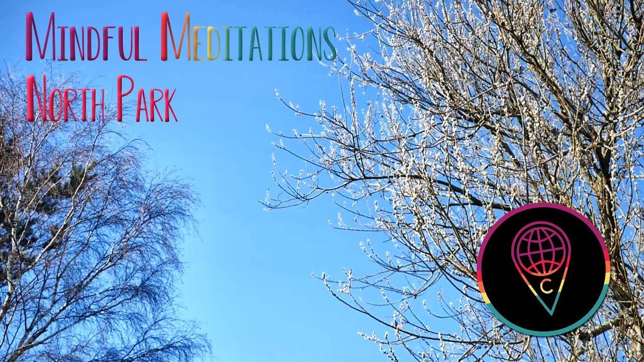 Mindful Meditations: North Park