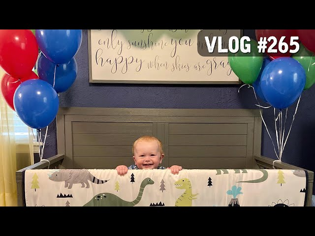 VLOG #265 / BODHI's 1st BIRTHDAY! / May 28, 2020