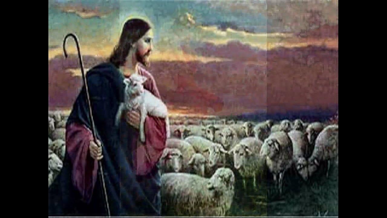 Resultado de imagem para Parábola a ovelha perdida