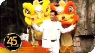 Gambar cover 南方群星大拜年 - 龙凤瑞狮庆新年(张美玲+秦咏)(合唱)