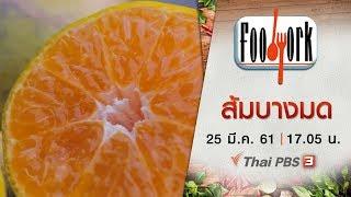 Foodwork : ส้มบางมด (25 มี.ค. 61)