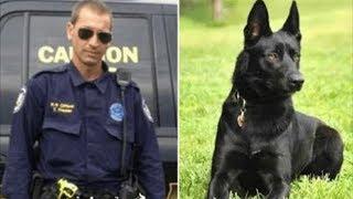 Члены банды тащат полицейского в лес, чтобы убить его, не видя приближения собаки K-9