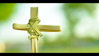 Chúa Nhật Lễ Lá - Thánh Vịnh 21