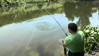 Рыбалка на пиранью, Вьетнам