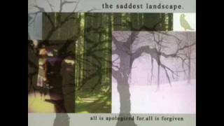 Watch Saddest Landscape Wishlist For The Drowning video