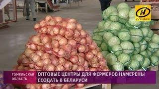 Оптовые центры для фермеров намерены создать в Беларуси